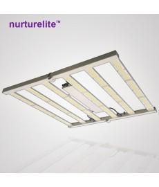 Nouvelle LED NURTURELITE professionnelle 480w