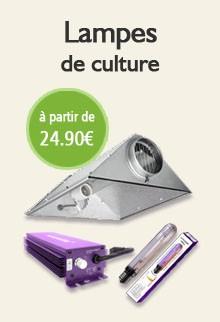 Lampes de culture